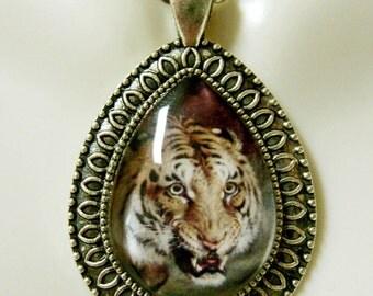 Bengal Tiger teardrop pendant and chain - WAP15-201