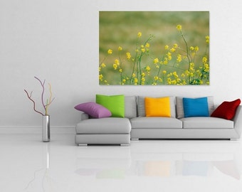 Elegant Yellow Wildflower Fields, Spring Flowers, Fine Art Print, Nature Photography, Wallart Photo Printable, Home Office Decoration Gift