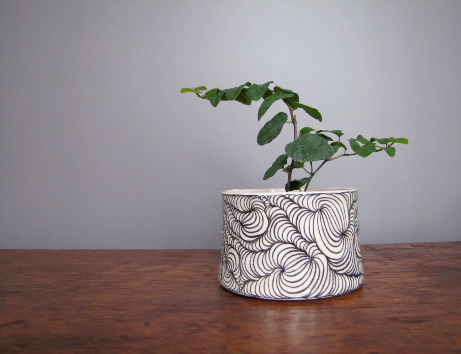 cache pot planter pottery white with black design black and. Black Bedroom Furniture Sets. Home Design Ideas