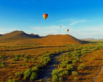 Nature Photography |  Balloons Over Phoenix