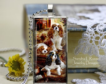 Cavalier King Charles Spaniels, King Charles Spaniel Necklace, Dog Shows, Kennel Clubs, Petigree Dogs, Dog Jewelry, King Charles Gift