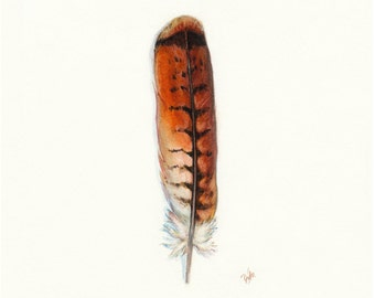 Red Tail Hawk Feather, Native American, Indian, Watercolor Feather, Watercolor Painting, Feather, Feather Art Print, Bird Art, Southwest Art