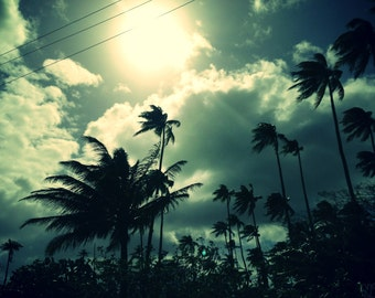 Framed photo series Polynesia