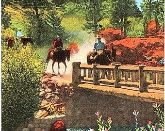 Vintage Colorado Postcard - Trail Riders in Rocky Mountain National Park (Unused)