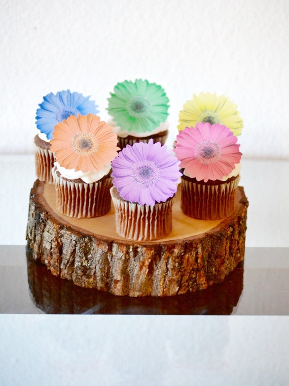 Edible Daisy Flowers - Pastel Cake & Cupcake toppers - Food Decoration