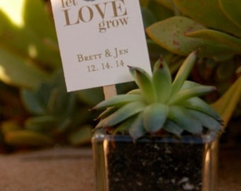 Succulent Wedding Favor Plant Stakes. Set of 32 Plant Stakes. Personalized Wedding Favor. Succulent Plant Stakes. Let Love Grow Plant Stakes