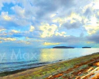 Sunlit Driftwood Panorama.  Sunshine coast, driftwood, Canada west coast, Sechelt, BC, British Columbia coast, Canada, Pacific Ocean