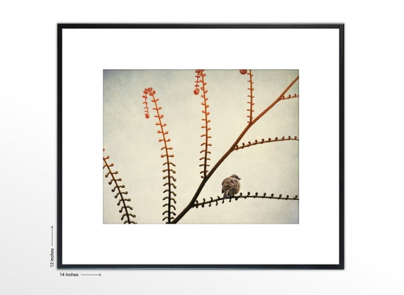 Tiny Song Bird on Branch. Minimalist Art. Nature Photography. Framed Fine Art Print. FREE SHIPPING.