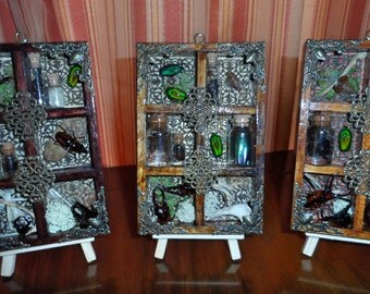 Small Cabinet of Curiosities wall hanger #5