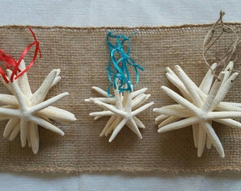 Starfish Ornaments, Beach Christmas Ornaments, SET of 6, 3-4 IN Starfish Christmas Ornaments, Beach Wedding Favor