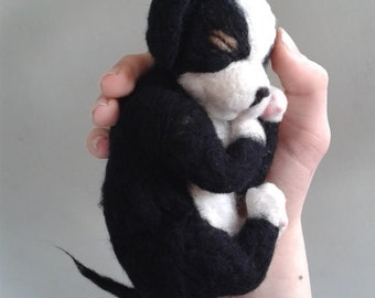 Needle Felted pup Newborn puppy black and white life size pup  Felted animal  Puppy Soft Sculpture  Animal OOAK  ready to ship  handmade