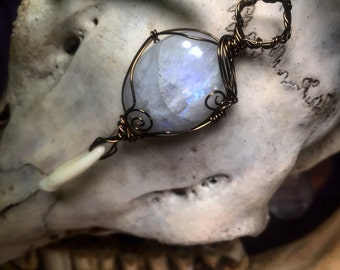 Moonstone & coyote tooth