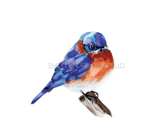 Eastern Blue Bird Watercolor Print / Watercolor Bird Art/ Pennsylvania Birds / Watercolor Wildlife
