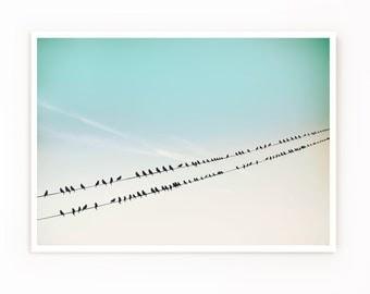 Birds No.249, Birds on A Wire Photograph, Pale Blue Decor, Nature photography, Bird Prints, Minimal Ombre Print