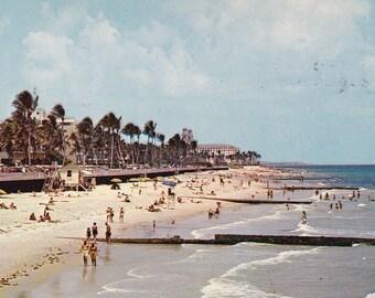 Palm Beach Florida Collectible Postcard Unused 1950's Beach Scene Swim Suits Unused