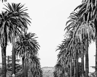 Hollywood Sign Photograph, Black and White Los Angeles Print, Black and White Photography, LA Print, Urban Decor, Palm Tree Print
