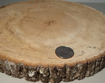 Set of 3 Poplar Wood slices or wood rounds around 9 inches wide and an inch thick