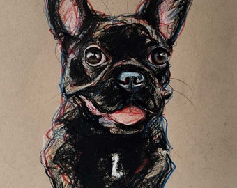 Commission Expressive Pet Portraits Original Art Drawings