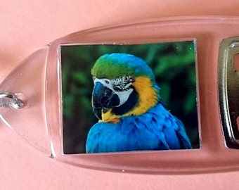 Blue and Yellow/ Gold Macaw Parrot - Bottle Opener Keyring/ Keychain