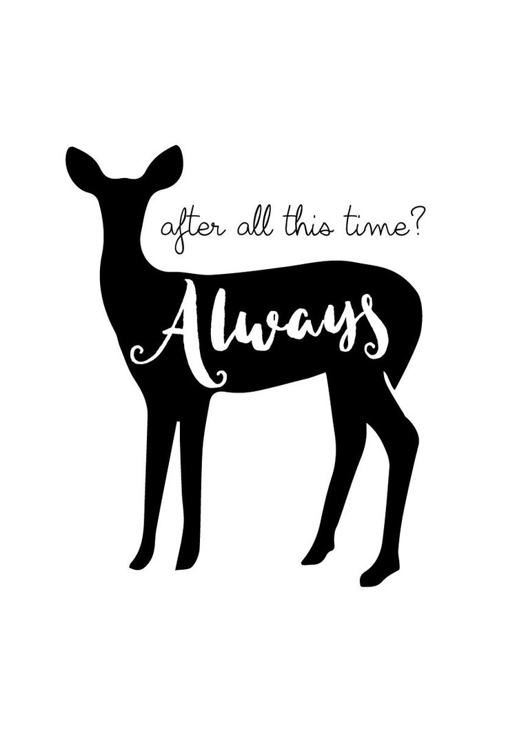 Harry Potter Print After All This Time Always by ...