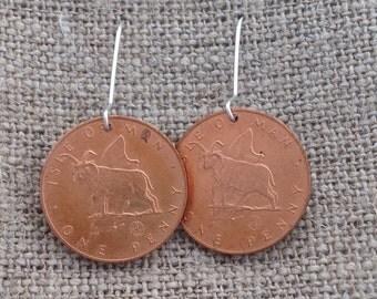 Manx Loaghtan sheep coin earrings