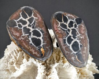 Septarian Geode Drawer Pull  / Cabinet Knob - Set