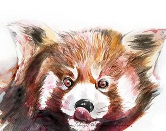Racoon print, watercolor print, watercolor art, woodlands animal, original watercolor, nursery decor, forest animal, woodlands art - 8