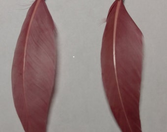Small dark pink feather earring