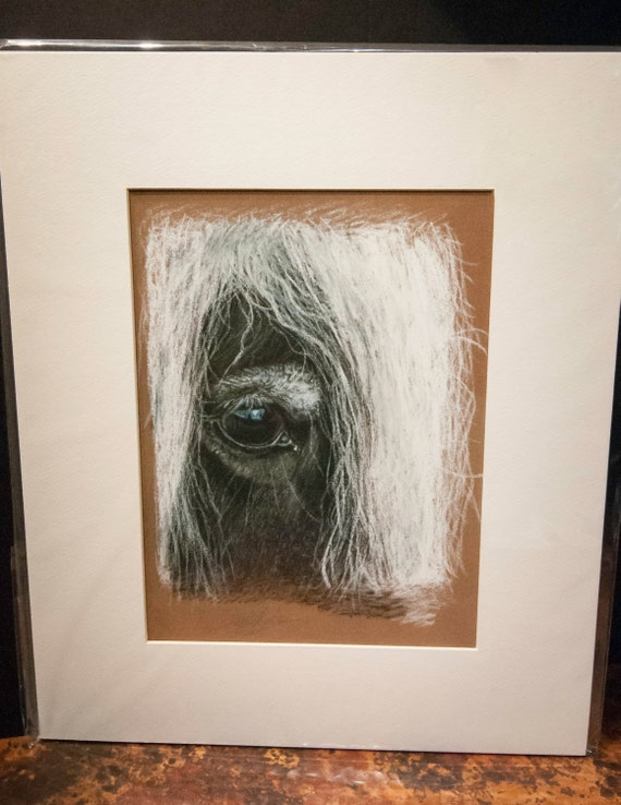 "Fine Art Giclee Print by Terry Kirkland Cook Gypsy Vanner Mare ""Talia's Eye"""