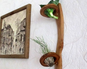 Mini Air Plant Wall Holder Wood Slice Small Shelf Wood By