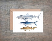 Maneaters Blank Note Cards - Set of 4. Scientific Illustration Prints. Watercolor Print. Shark Art.