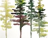 Watercolor pine tree print 9x12 in