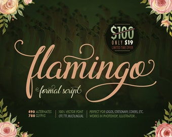 Formal script font Flamingo. Calligraphy font with swashes. 12-20 alternates for each letter. Multilingual.