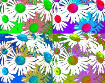 Refrigerator Magnet Daisy Flowers Pop Art