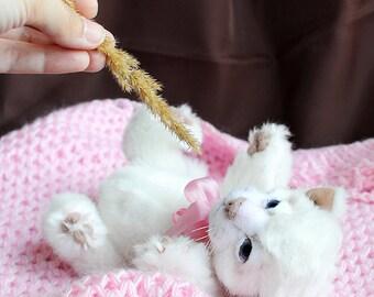 SOLD realistic white cat Teddy Bear friend kitten OOAK newborn white kitten Sheba
