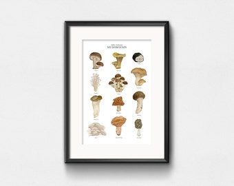 Edible Cultivated Mushrooms Art Print | Watercolor Art | Infographic Fungi Chart | Wall Decor | Hand Lettering | 11x14 | 13x19