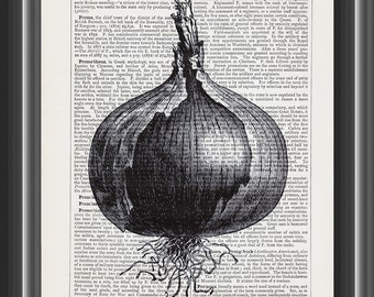 Naples Giant Rocca Onion vegetable upcycled dictionary art print vintage print wall art home decor farm kitchen