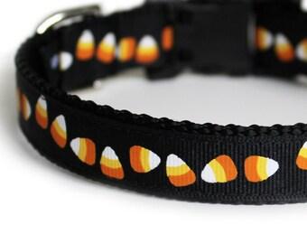 Halloween Dog Collar, Black with Candy Corn, Small Dog Collar for girls or boys, Gift Box Included, Cute Dog Collar- Itty Bitty Candy Corns