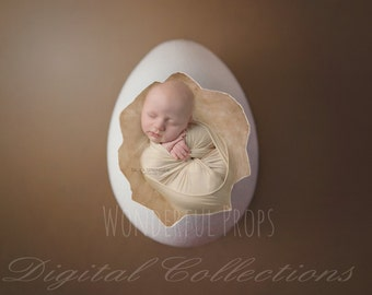 Digital Newborn Photography Egg Prop Backdrop - Eggshell, Brown, Single