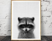 Nursery Animal, Racoon Print, Printable Woodlands Decor, Wall Art, Kids Room, Forest Animal, Black and White Instant Download, Woodlands Art