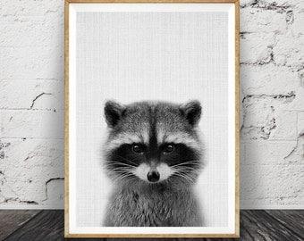 Racoon Print, Woodlands Nursery Wall Art Decor, Printable Animal, Babies and Kids Room Poster, ...