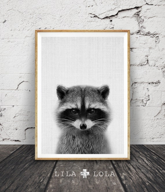 racoon print woodlands nursery wall art decor by lilaxlola on etsy. Black Bedroom Furniture Sets. Home Design Ideas