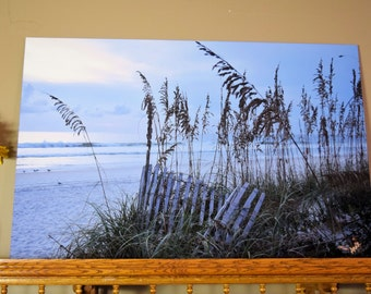 Sea Oats and Sand Fence Photography Print on canvas or on wood or paper or slate