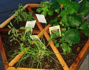 Handmade Cedar Herb Planter