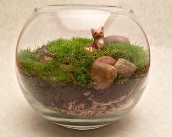 """Live Moss Terrarium with """"Hagen-Renaker"""" Fox Figurine"""