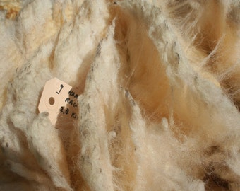 Hampshire Down raw wool/ruwe wol