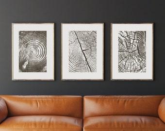 Tree Ring Prints, Tree Ring Art, Wood Print, Wood Art, Photo Tree Ring, Black and White Photo, Digital Download, Nature Photo, Nature Art
