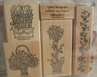 Stampin Up! Retired Heart Blossoms Stamp Set ~ Retired