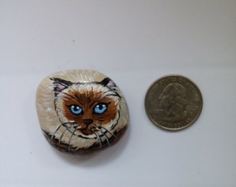 Hand Painted Rock/Pebble : Siamese Cat