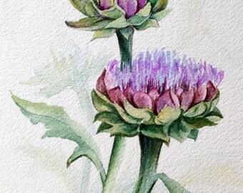 Artichoke watercolor painting. Original watercolor painting. Original vegetable painting. Vegetable watercolor. Small watercolor painting